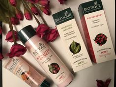 Winter Skincare & Wellness with Biotique