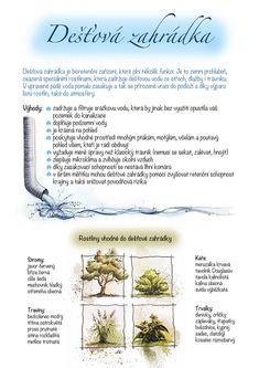Kartičky návrhy — KT gardens ktgardens Garden Plants, Indoor Plants, Water Systems, Growing Plants, Landscape Architecture, Home And Garden, Gardens, Chata, Biology
