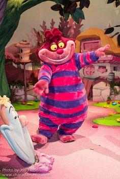 Cheshire cat - Alice in Wonderland