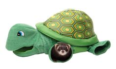 Turtle Tunnel – Marshall Pet Deals