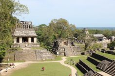 Ruinerne i Palenque - et imponerende syn midt i junglen
