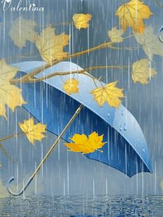 Pretty Autumn rain#umbrella#Fall leaves