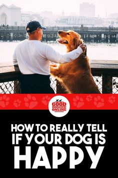 Puppy Training Schedule, Dog Training Treats, Dog Training Courses, Basic Dog Training, Stop Puppy From Biting, Puppy Biting, Dog Body Language, Dog Behavior, Happy Dogs