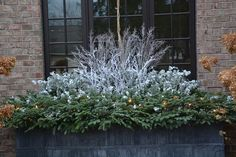 Winter Windowboxes: Find Your Style Just because it's winter doesn't mean you have to forget about your windoboxes! This chic decor is made from eucalyptus and white leptospermum branches on a bed of cut conifer branches. Winter Window Boxes, Christmas Window Boxes, Christmas Planters, Christmas Porch, Outdoor Christmas, Christmas Greenery, Fall Planters, Winter Christmas, Christmas Decorations