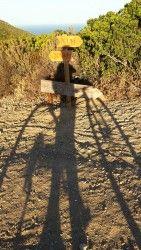 [Haute-Corse] XTRI de Calvi Itinéraire du XTRI de Calvi 2017 Très beaux paysages sur la baie de Calvi et Lumio. A faire tôt le matin pour éviter les chaleurs de l'été. Parcours sélectif par son dénivelé important sur une courte distance.