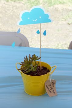 Rain drop  baby shower table center piece. yellow bucket $1.99 on sale at Michaels, tan tags 6 in a pack for a $1.00 at Michaels, plant was bought at home dept $3.99 per small bucket (separated into five) ,shish kabobs sticks used for clouds that were made with cricut.