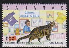 Bahamas cat stamp.