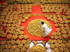 A priest arranges an offering of mangoes to a hindu god during mango festival in the Indian city of Ahmedabad