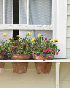 wooden shelf with flower pots. This way you take plants inside to move house. I want window box or hollowed out log