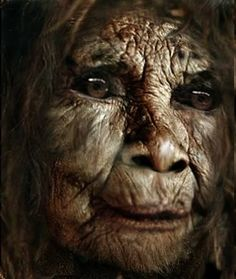 I saw this on one of BF/FB friends page.  This is a replica of a female bigfoot described by an eyewitness.