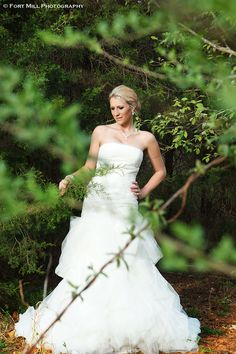 Winter Bridal © Fort Mill Photography Utilizing available greenery during the Winter to frame a Bridal Portrait. #winterbridal #bridalportrait