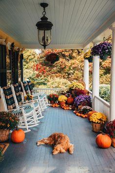 Fall Home Decor, Autumn Home, Modern Fall Decor, Autumn Art, Autumn Aesthetic, Decoration Design, Soft Blankets, Diy Blankets, Autumn Inspiration