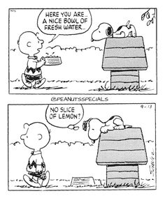 First Appearance: September 13th, 1988 #peanutsspecials #ps #pnts #schulz #snoopy #charliebrown #nice #bowl #fresh #water #slice #lemon www.peanutsspecials.com