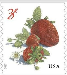 Stamp: Strawberries (United States of America) (Fruits) Sn:US 5201