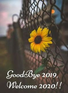 Good Bye 2019 Hello 2020 Wishes & Quotes, Happy New Year 2020 Welcome Status and Messages Happy New Year Poem, Happy New Month Quotes, End Of Year Quotes, New Year Wishes Quotes, Happy New Year Pictures, Happy New Year Message, Funny New Year, Happy New Year Greetings, Quotes About New Year