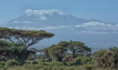 Mount Kilimanjaro is one of the few snow-capped equatorial peaks in Eastern...