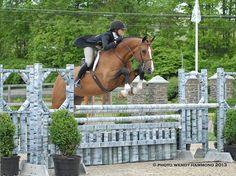 Showhunter jumps