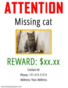 How to Find a Lost Cat | Missing Cat Poster | Lost Cat Finder