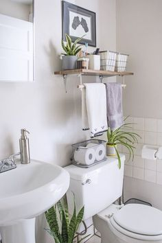 10 Ways to Love Your Rental Bathroom Apartment bathroom obstacles can be frustrating, but don't lose faith! Discover how to hide an ugly shower door, really remove soap scum, and more! Apartment Living, Small Apartment Decorating, Bathroom Solutions, Small Apartment Bathroom, Bathroom Decor Apartment, Small Bathroom Decor, Bathroom Interior, Small Bathroom, Bathroom Decor