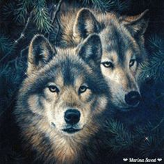 Wolves animation gif click see movement