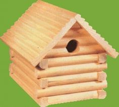 Home Woodworking Project: Birdhouse