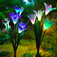 2-pack Solar Lily Flowers Garden Lights LED Outdoor Yard Decor Lamp Multi-Color #deals #discounts Solar Flower Lights, Solar Lawn Lights, Landscape Lighting, Outdoor Lighting, Lighting Ideas, Outdoor Decor, Garden Night Lighting, Solar Powered Lamp, Solar Lamp