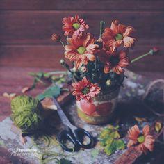 Still Life Art, Flower Art, Art Photography, Bloom, Flowers, Painting, Instagram, Art Floral, Fine Art Photography