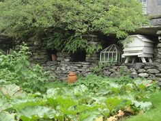 Beatrix Potter's garden at Hill Top Farm, Near Sawrey, Cumbria Lake District, England, UK