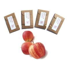 4 Mac Apple Scented Mini Sachets Car Air by pebblecreekcandles, $12.00