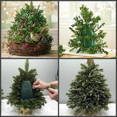 Make Christmas Decorations – 49 Decorating Ideas for a Beautiful Banquet Table - Xmas Christmas Flower Arrangements, Christmas Flowers, Christmas Centerpieces, Christmas Tree Decorations, Floral Arrangements, Christmas Holidays, Table Decorations, Xmas Tree, Christmas Projects