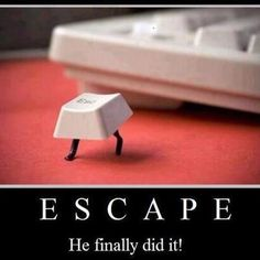 Funny      Pin , Like , Share :)   hay so that's what happened lol