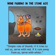 It is important to know what wine best fits each occasion and food pairing. Here is a tip. www.beyerskloof.co.za