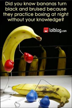 The first rule of banana fight club is, you don't talk about banana fight club.