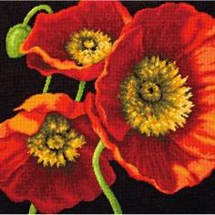 Needlepoint & Needlepunch - Red Poppy Trio Needlepoint Kit - Stitched In Wool & Thread~I love poppies! Wool Thread, Cotton Thread, Wool Yarn, Butterfly Pattern, Poppy Pattern, Needlepoint Kits, Counted Cross Stitch Kits, Cross Stitch Flowers, Red Poppies