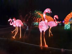 En voie d'illumination saison 2 : Océan jusqu'au 19 janvier 2020 - Katatsumuri no Yume Expositions, Painting, Art, Orcas, Season 2, Art Background, Painting Art, Kunst, Paintings