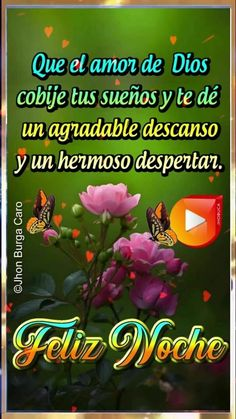 Good Night Messages, Good Night Quotes, Beautiful Butterflies, Happy Day, Petra, Gifs, Facebook, Good Night Msg, Messages