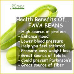Fava Beans, health benefits of Fava Beans