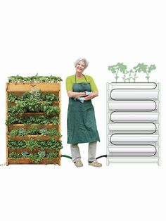 Your DIY vertical herb garden will need some attention in the beginning, by setting everything up and planting the herbs you will need, but after that is becomes easier to manage the herb garden, by watering the plants and cutting any excess foliage or dry ends. Some herbs work better when dried, so you may need a place where to do so, but others better used when fresh, so it is more practical as you only need to get the herb from your vertical planters and add it to the dish you are… Aquaponics Greenhouse, Aquaponics Diy, Diy Greenhouse, Vertical Herb Gardens, Vertical Planter, Drip Line Irrigation, Patio Planters, Garden Supplies, Succulents Garden