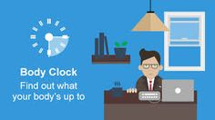 Image result for body clock
