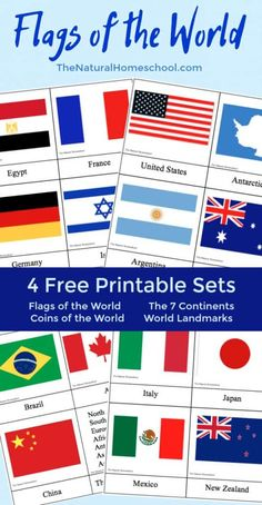 Fantastic Country Flags of the World with 4 Free Printables – The Natural Homeschool Country Flags of the World: A Fun Geography Lesson Free Printable Sets} Multicultural Activities, Geography Activities, Geography For Kids, Geography Lessons, World Geography, Montessori Activities, Activities For Kids, Teaching Geography, Montessori Materials