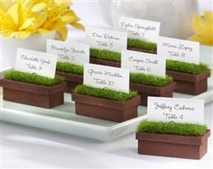 Evergreen Window Planter Place Card and Photo Holder - Everyone can use a little green when planning a celebration