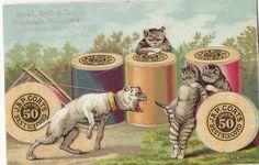 J & P Coats, Cats, dogs, spools of thread