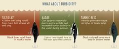 What About Turbidity?
