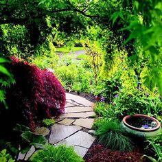 Trittsteine Weg Gartenideen