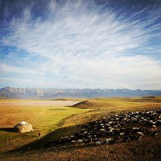 Alay valley, Osh region  #Kyrgyzstan #nature
