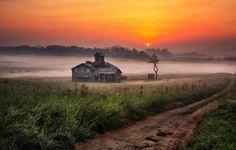 MISTY MORNING - 안성목장의 아침