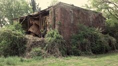 """""""The Night They Drove Ole' Dixie Down 2""""  This is the crumbling ruins of a house, formally school house built in 1851. Due to neglect it has become overgrown with weeds, moss, and trees. It is slowly being consumed by the south it once stood for. Copyright 2012 Ronald Rickard"""