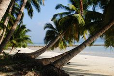Piękne plaże Havelock. Andamany. Foto: D. Jaworska