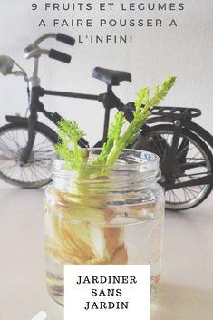 Multiplication Végétative, Agriculture, Glass Vase, Garden, Garden Art, Fruits And Veggies, Lawn And Garden, Plants, Hobbies