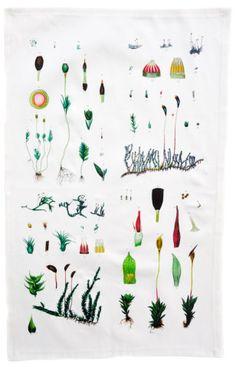 Botanical Moss Tea Towel   LEIF
